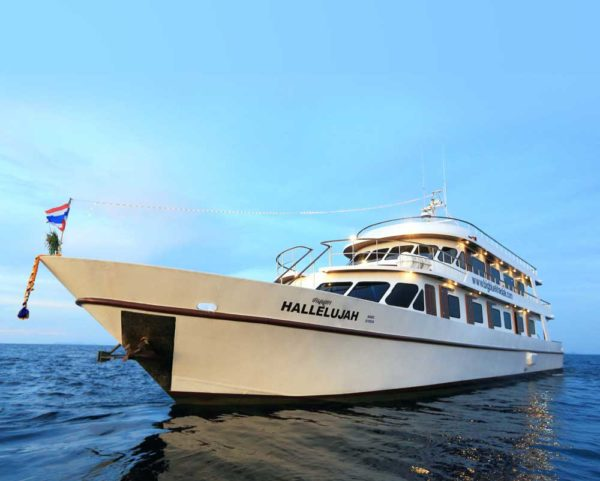 Liveaboard diving on the Similans   Why you should book a